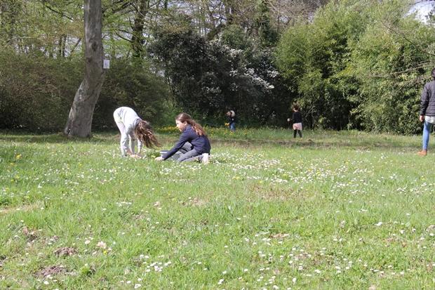 La nature, richesse du centre de loisrs Triboulet à sauvegarder