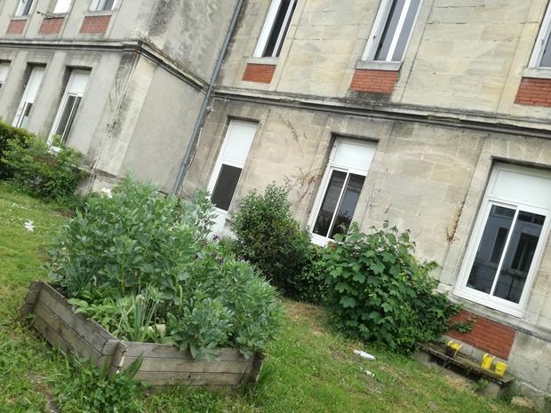 Bientôt un jardin partagé à l'école Camille Maumey