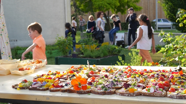 Le buffet artistico bio préparé en mode collaboratif par l'AMAP les Gourmandignes et les habitants
