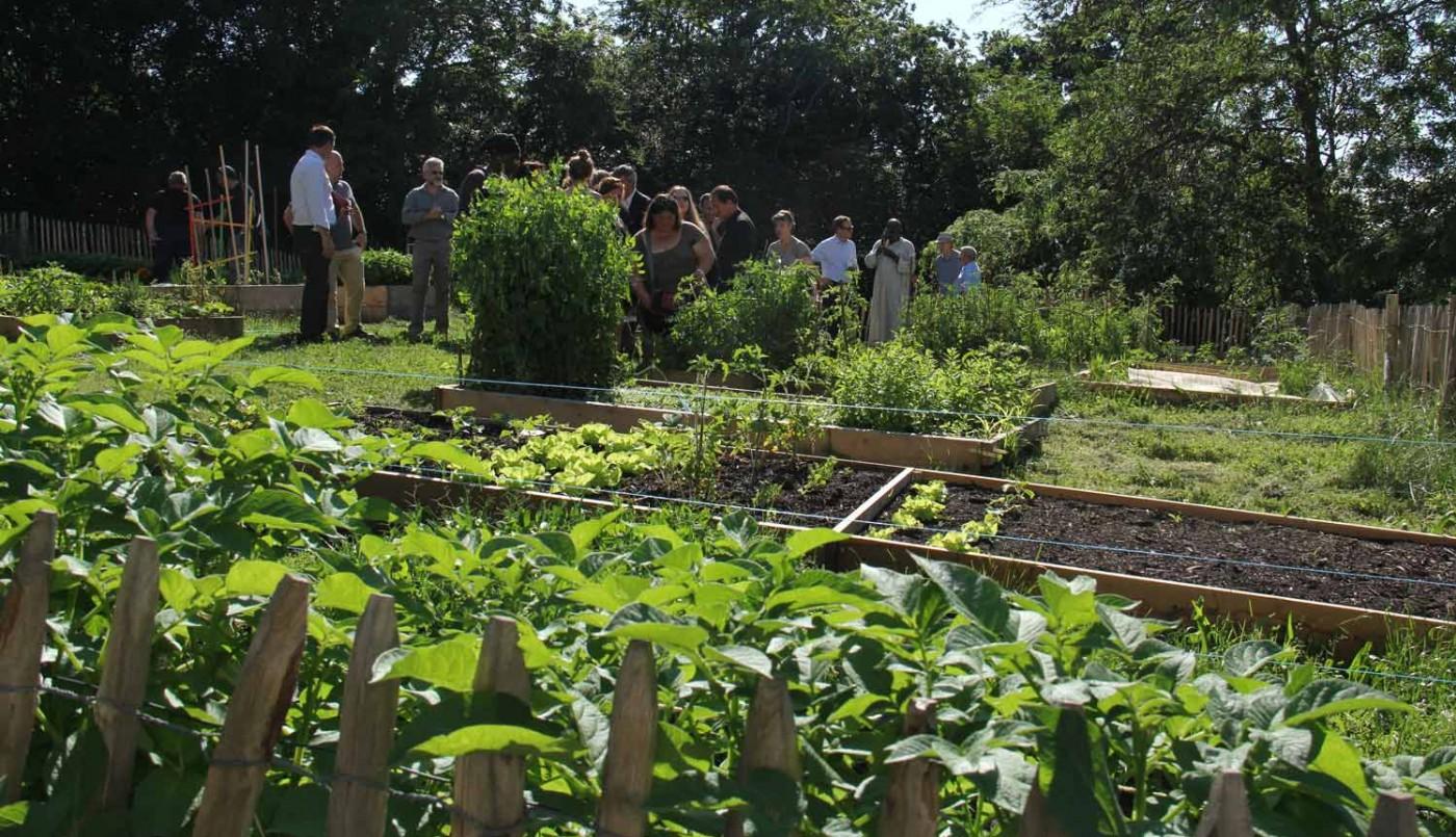 Les jardins partagés de Cenon
