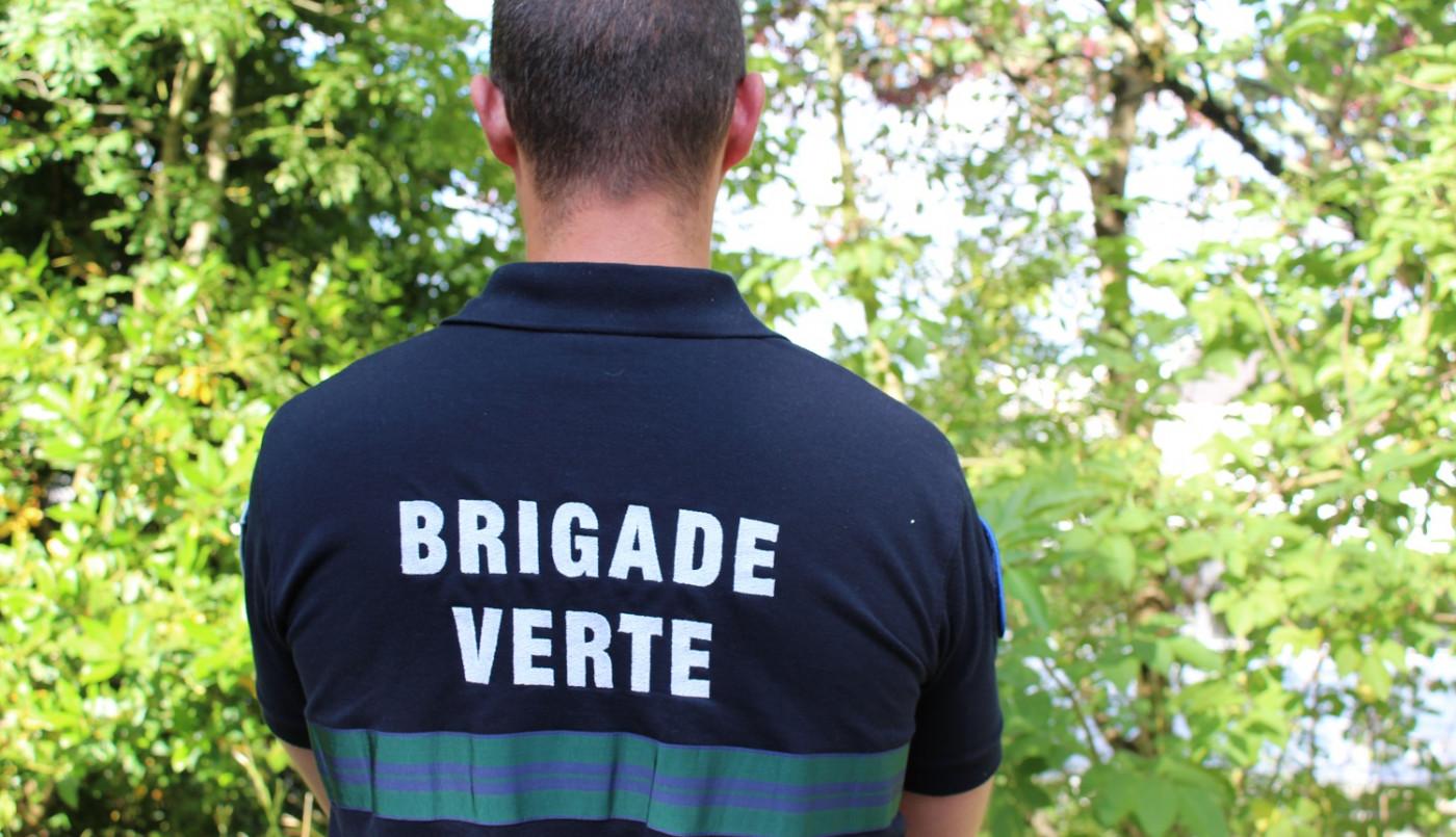 La brigade verte